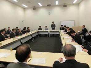 沖縄関連法案に関する与野党プロジェクトチーム