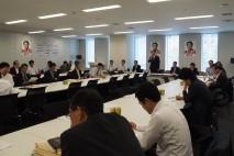 安全保障・憲法総合調査会合同会議