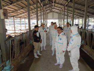 綾町肉用牛総合支援センターの視察